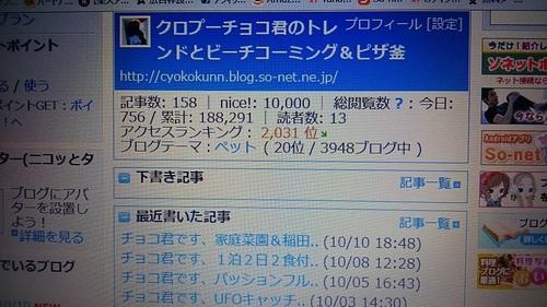 DSC_7770.JPG